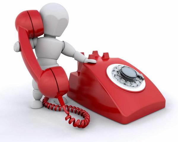 Подача запроса по телефону